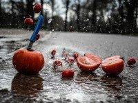 Strange Festivals Across The World : La Tomatina