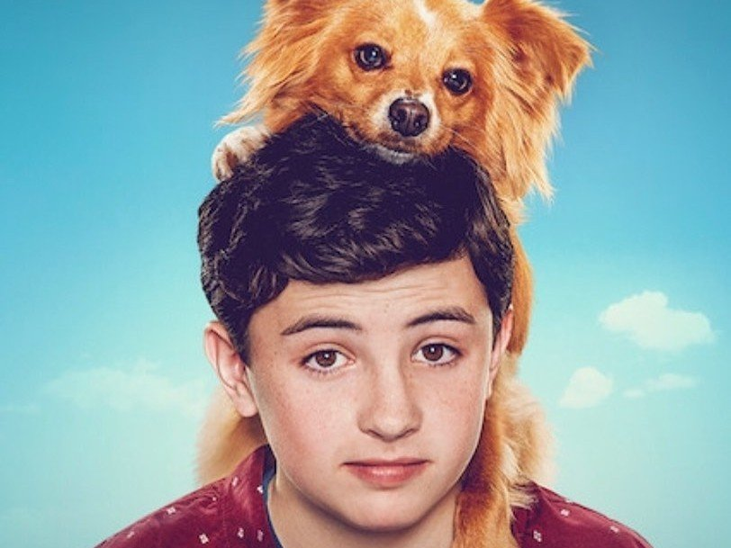 Cutest Dog Movies/Shows To Watch on Netflix