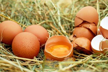 Scramble The Egg Inside The Egg Itself With These Life-Saving Hacks