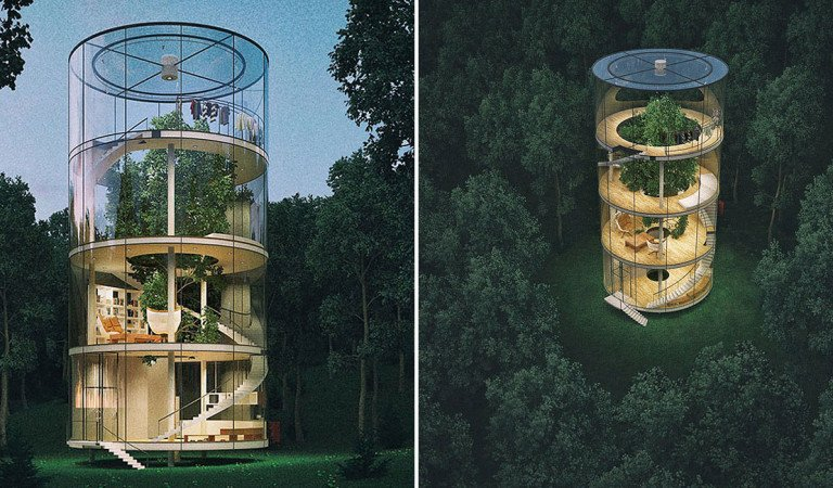 You Thought It Was Cool To Have A House Between Trees? Wait Till You See This Tree Between A House
