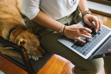 crop unrecognizable woman working on laptop near adorable dog