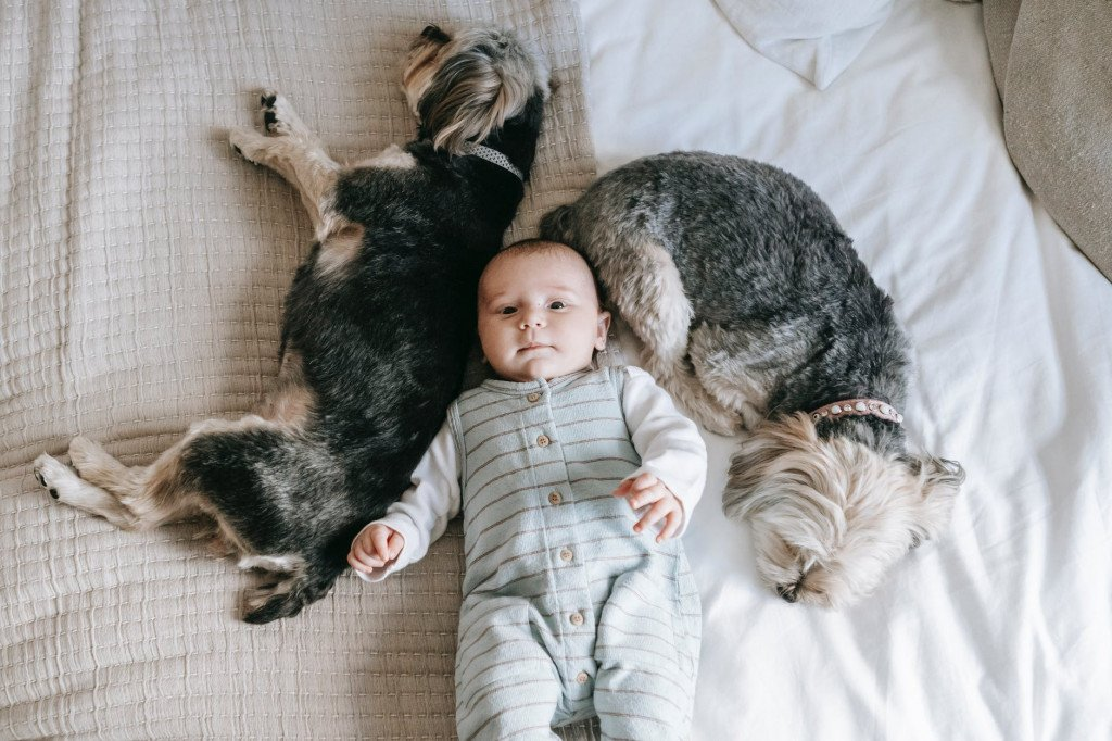 Scientists Say You Need To Tuck Your Kid And Your Pet In The Same Bed!